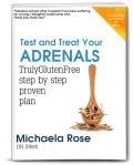 Adrenals TGF 3D